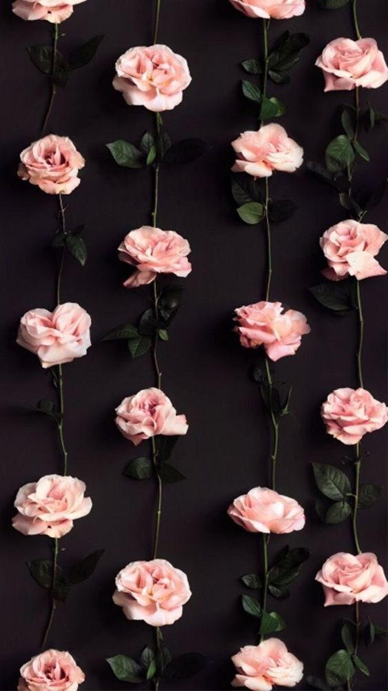 45 Beautiful Roses Wallpaper Backgrounds For Iphone Poster Bunga Wallpaper Bunga Lukisan Bunga