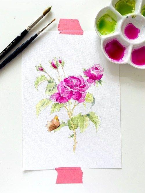 Rose Mit Aquarellfarben Malen So Nice Aquarellfarben Aquarell