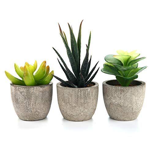 T4u 3pcs Serie De Plantes Succulentes Artificielles Herbe En