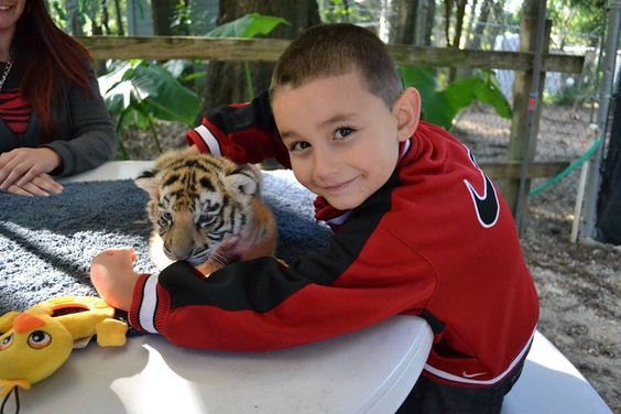 New friends with a tiger cub at Dade City's Wild Things