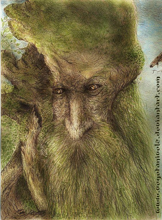 Treebeard _Barbol by ~vegetanivel2 on deviantART ~ LOTR