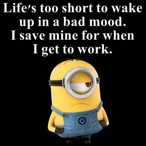I M The Same But With School Minions Funny Minion Jokes Work Humor