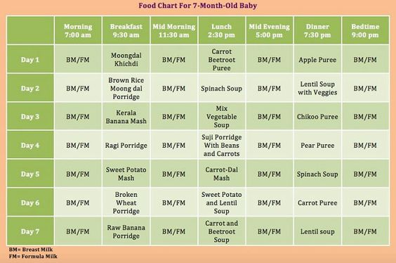 Seven Month Baby Food Recipes