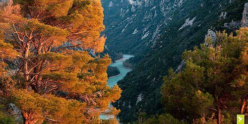 Verdon, le serpent vert | Parc Naturel Régional du Verdon. Alpes de Haute-Provence