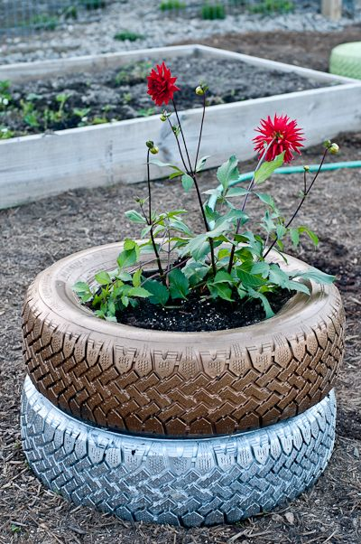 Spray painted tire planter: