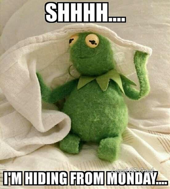 Pin On Funny Kermit Memes
