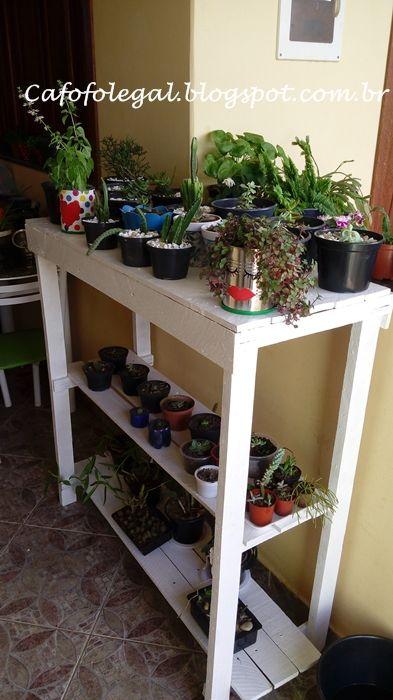 Estante de pallet para suculentas e cactos cafofo for Estantes para plantas exteriores