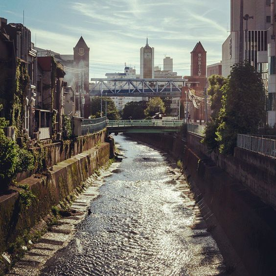 6660 http://sandman-kk.tumblr.com/post/126827182861 #street #river #view #bridge #urban #perspective #tokyo #japan #2015 #daylight