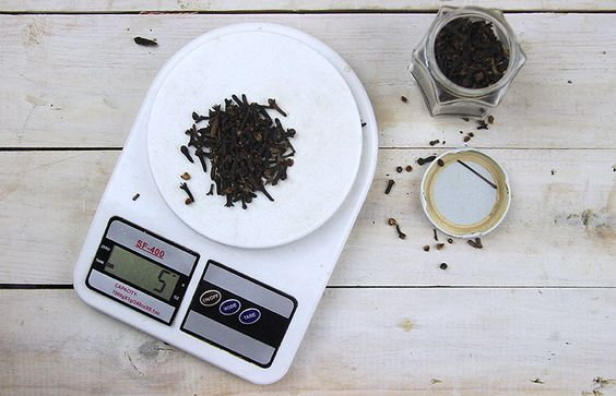 Como deixar as formigas e as moscas bem longe da sua mesa: aprenda a fazer um repelente natural!