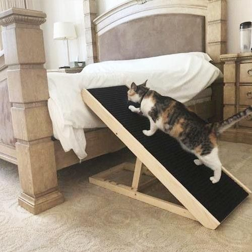Scratchy Ramp Cat Ramp With Images Cat Ramp Cat Scratcher Cats