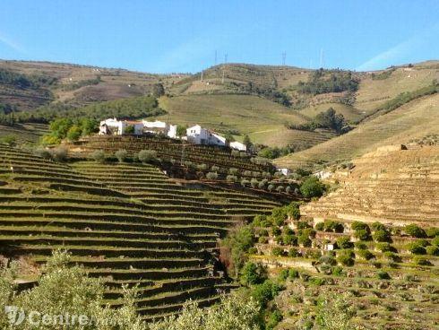 L'hôtel Six Senses ouvrira dans la vallée du Douro, inscrite au patrimoine mondial de l'humanité de l'Unesco. - AFP PHOTO/Suzanne Mustacich ... Portugal