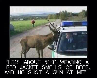 Colorado Story.