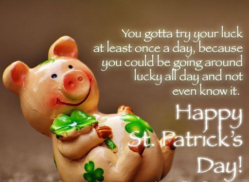 St Patrick Day Photos St Patricks Day Quotes St Patricks Day St Patrick S Day Photos
