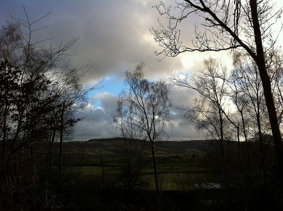 Moody view  by Charlie Cannell, via Flickr