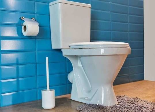 10 Plumbing Tips Everyone Needs To Know Bathroom Rules Toilet