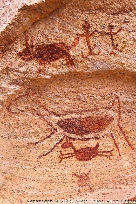 A pintura rupestre da capivara com seu filhote constitui no simbolo do Parque Nacional da Serra da Capivara localizado no estado do Piaui