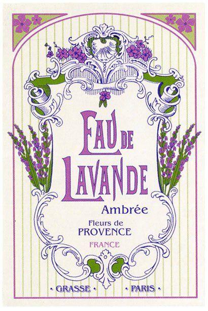 the lilac cottage ✿⊱╮X ღɱɧღ || eau de lavande #lovelylavender