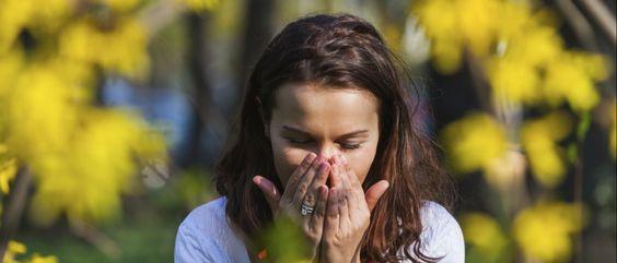Noticias ao Minuto - Conheça a app que ajuda a controlar as alergias