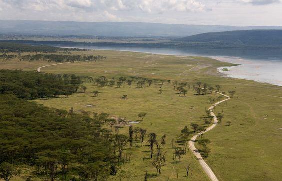Lake Nakuru NP http://bit.ly/2a2BkAN