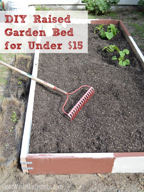 How To Build A Raised Garden Bed For Under 15 Gardens Raised Garden Beds And Raised Gardens