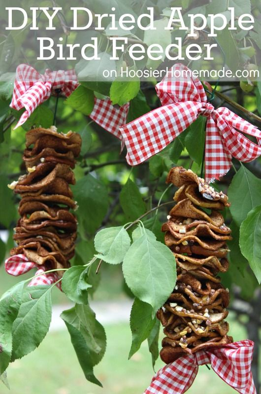 DIY Dried Apple Bird Feeder -  Keep the birds happy and coming back with this DIY Dried Apple Bird Feeder. The kids can help make it too! It has NO PEANUT BUTTER! Click on the Photos for Instructions!