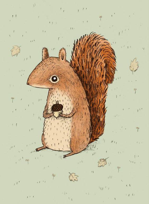 Sophie Corrigan Illustration