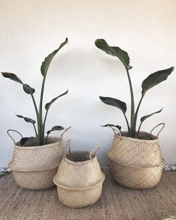Small natural storage seagrass basket belly basket by for Seagrass landscaping