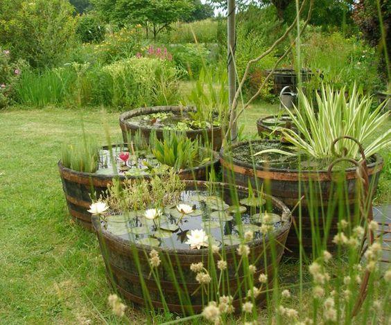 transformation d 39 une demi barrique en bassin santonine plantes aquatiques mini bassin et. Black Bedroom Furniture Sets. Home Design Ideas