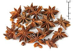 Frutos de estrela-de-anis (Illicium verum)