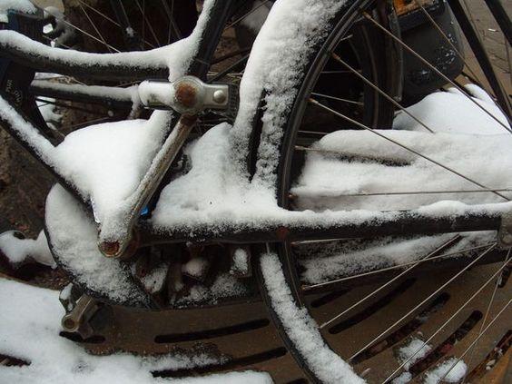 Sus fotos de la nieve - National Geographic - via http://bit.ly/epinner