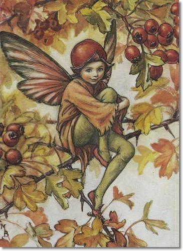 Cicely Mary Barker - Flower Fairies of the Autumn - The Hawthorn Fairy Archival Fine Art Paper Print