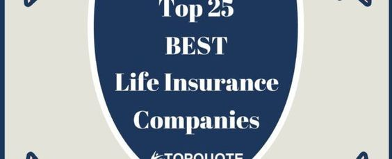 If You Are Searching For A Review On Banner Life Insurance Company Then You  Are At The Right Place. Go Through Our Detailed Review And Then Get A Qu2026