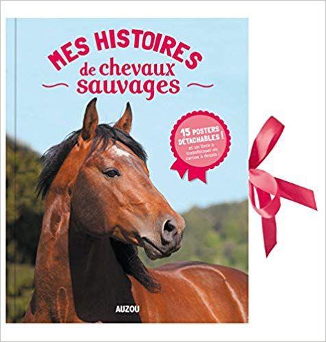 Telecharger Mes Histoires De Chevaux Sauvages Pdf Gratuitement Horses Animals Books