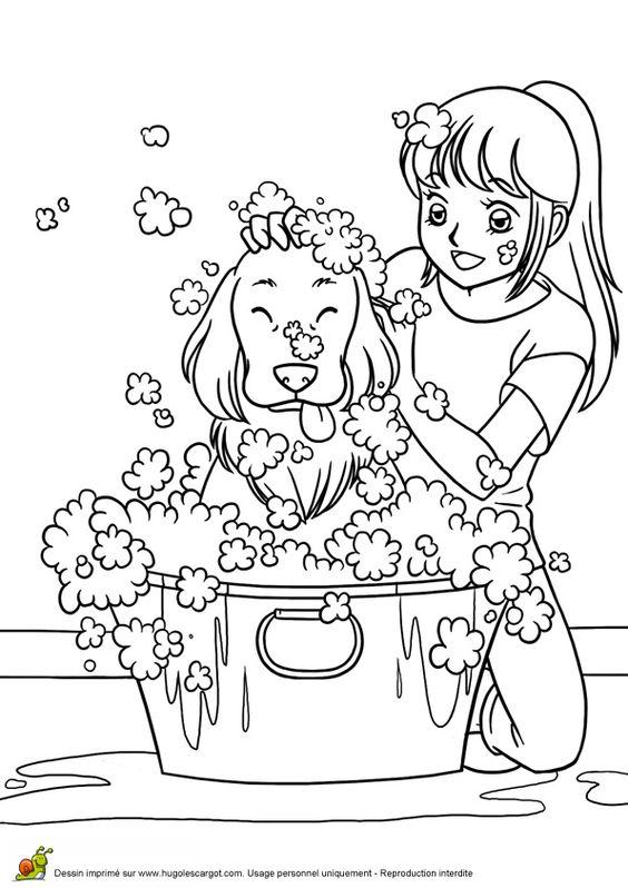 Toilette Chien, page 12 sur 13 sur HugoLescargot.com