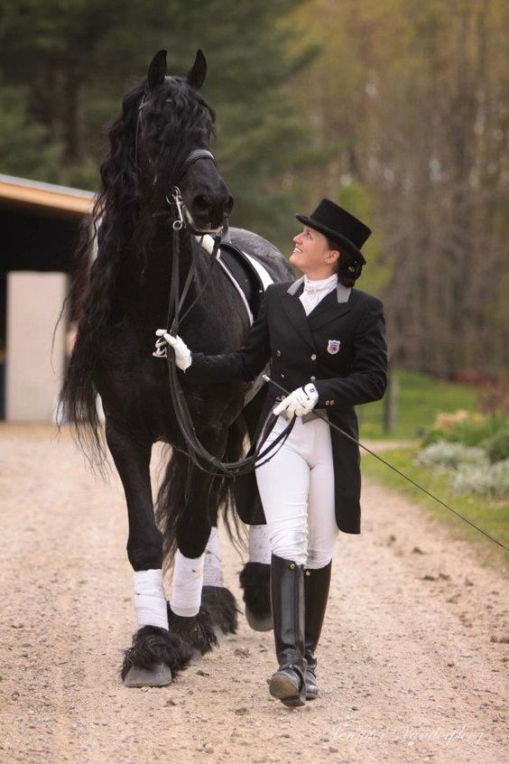 ALERT 475 SPORT, The only approved son of Jasper in North America, Here he is with his Rider Stacey who helped on his journey. Also know as Casper!!! LOVE THIS FRIESIAN STALLION STALLION, PURELY AMAZING!!!!