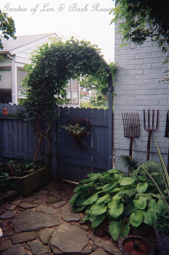 Gate into the back garden w/ sweet autumn clematis and bluestone patio we laid.