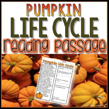 Pumpkin Life Cycle Reading Passage with answer key