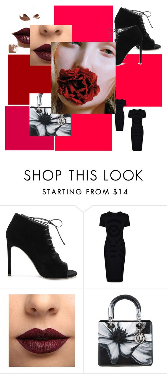 """Red  Rose"" by lvoth ❤ liked on Polyvore featuring beauty, Yves Saint Laurent, McQ by Alexander McQueen, LASplash and Christian Dior"