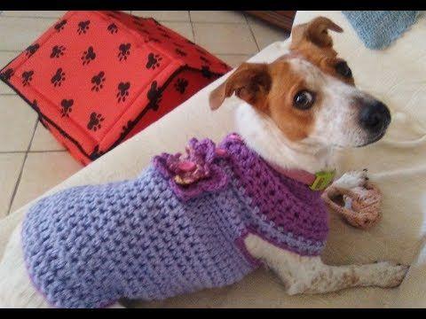 25) CROCHET DOG SWEATER any size tutorial YouTube