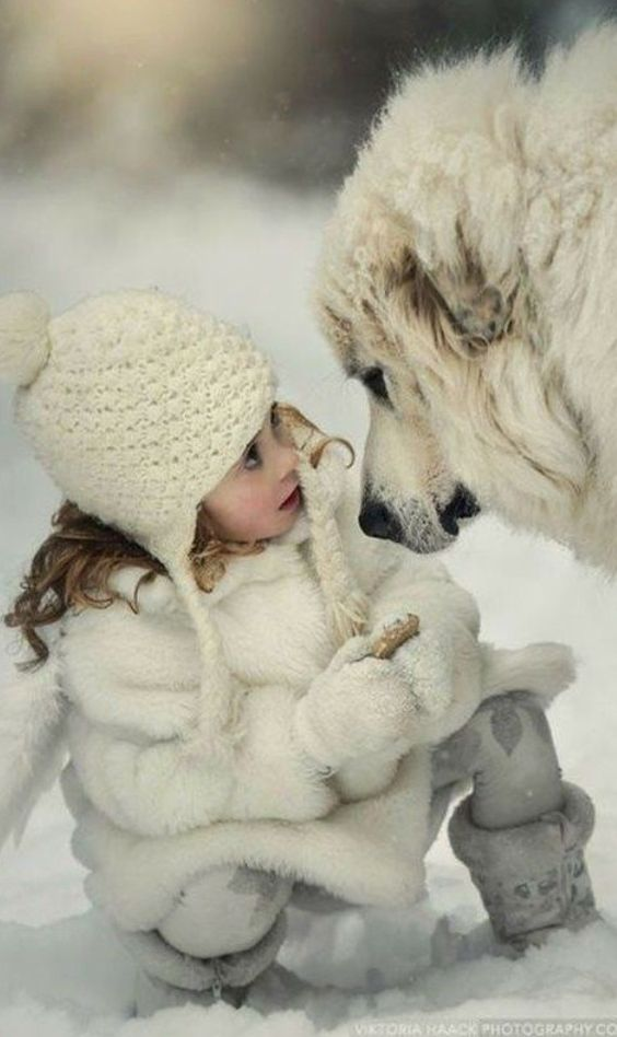 Small girl in white furry coat and hat with fluffy white dog in snow #adorableanimals #winterwonderland