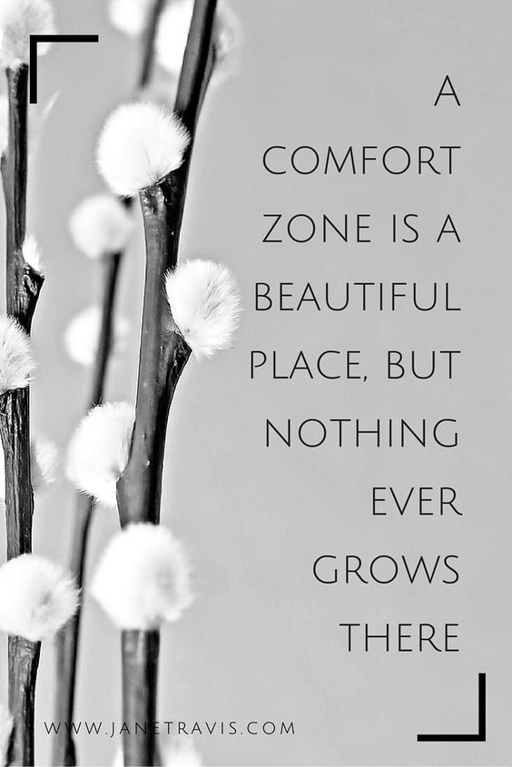A comfort zone is a beautiful place, but nothing ever grows there - inspirational quote
