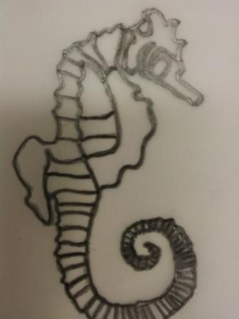 Tracing of an image of a Seahorse