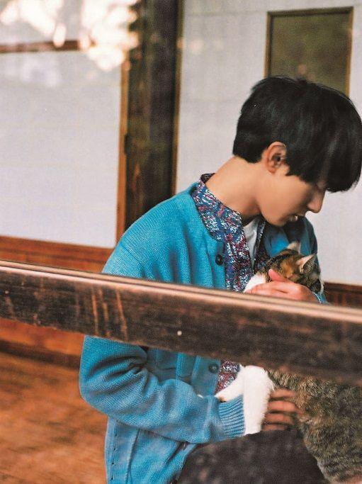 吉沢亮,髪型,セット方法,画像