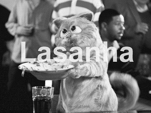 Amoo Lasanha !