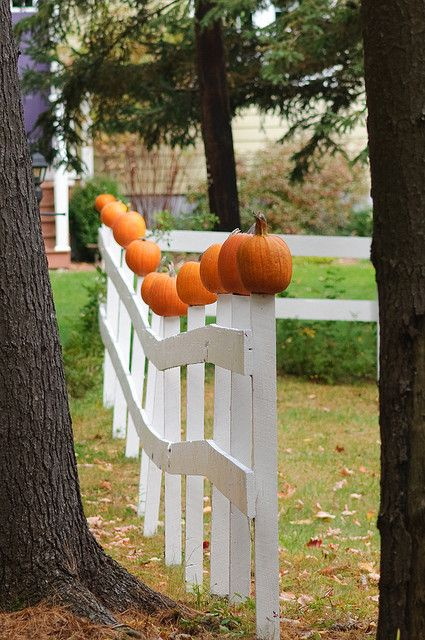 'Pumpkin Fence' - photo by Rick Woodfin, via Flickr;  Warner, New Hampshire