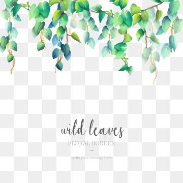 Wild Leaves Border In Watercolor Style Png And Vector Free Graphic Design Modern Card Design Flower Drawing