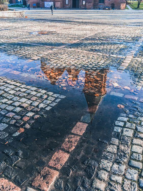 Где прогуляться по Калининграду ноябрьским днем
