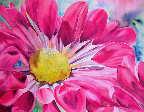 A chrysanthemum flower bursts open revealing vibrant pink petals and a bright yellow centre!