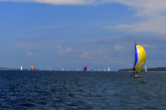 Regatta with all the fleet. Sail with www.marinfinito.com