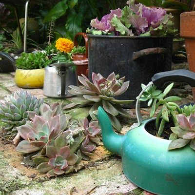 old pots & pans repurposed: Repurposed Teapots, Tea Kettle, Flower Pot, Gardens Backyard Ideas Water, Teapot Planters, Tea Pots, Container Gardening,  Flowerpot